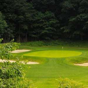 Cobb's Creek GC - Karakung: #17