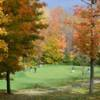 A view of a green surrounded by vivid fall foliage trees at Whispering Woods Golf Course